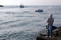 Pescatori rientrano al porto. Fishermen come to the fish port....
