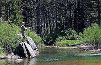 Fly Fisherman Sierra Stream Flowing from Moutnains, Sierra Nevada CA