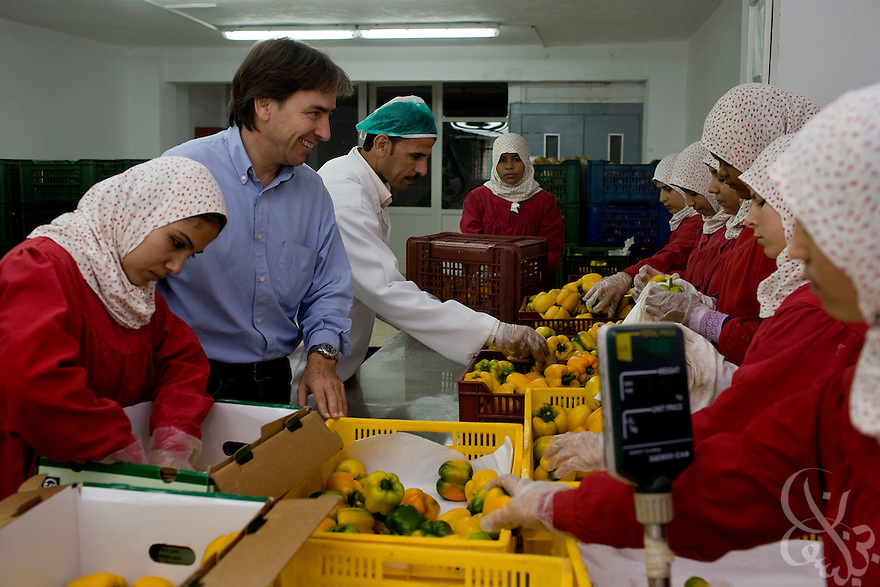 Helmy Abouleish, (c) Managing Director of the leading Egyptian Organic foods and products producer, Sekem Group, watches as Egyptian women prepare fresh peppers for export at the Sekem farm Nov 4, 2008 in Belbeis, Egypt. Helmy's father, Dr. Ibrahim Abouleish founded the project in 1977 on what was then barren desert, and since has grown it into a lush oasis ecompassing several farms, production plants, schools and even a local medical facility.