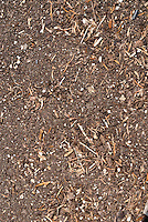 Compost - 3 stage, stage 3 FINAL FINISHED of decomposition. Step by Step series. See also accompanying stock photos of stages 1 and 2, which show the decaying process of the composting heap in the garden.
