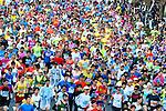Toyko Marathon