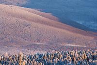 Winter frost across the hillsides surrounding Fairbanks, Alaska