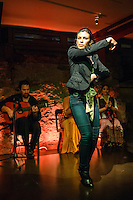 Flamenco Centro Performance at Quilt & Co.