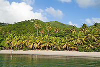 Brewer's bay Tortola, BVI