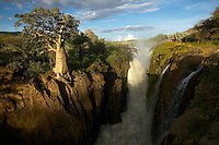 Namibia, 2004 - A waterfall has caused massive erosion in the savanna. It flows now as it has for many seasons. Despite the erosion's extent, a well rooted tree hangs on at the edge.