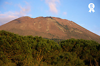 Vesuvius volcano slopes at sunset (Licence this image exclusively with Getty: http://www.gettyimages.com/detail/95489982 )
