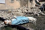 Terremoto in Centro Italia, Illica, Salette, Scai, Torrita, Accumoli