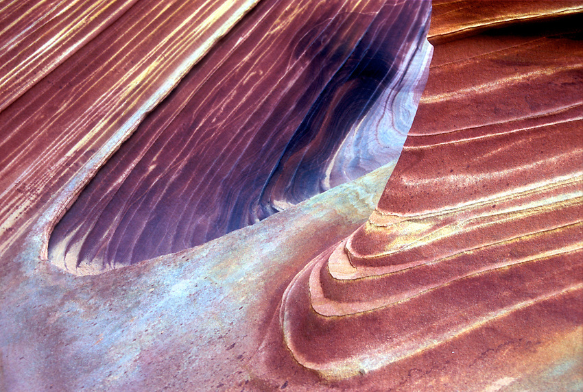 "This detail of brightly colored, highly textured sandstone is a small part of the very famous ""Wave"" in Northern AZ."