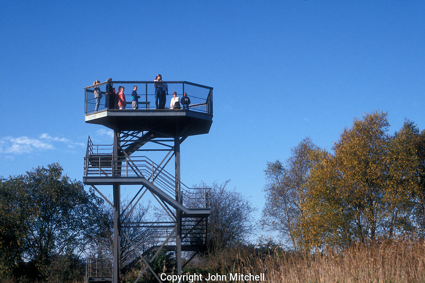 Wildlife observation platform at the George C. Reifel Migratory Bird Sanctuary in Delta, BC, Canada.