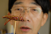 "Shoichi Uchiyama about to eat a locust. Tokyo resident Shoichi Uchiyama is the author of ""Fun Insect Cooking"". His blog on the topic gets 400 hits a day. He believes insects could one day be the solution to food shortages, and that rearing bugs at home could dispel food safety worries."