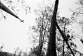 Orange, Texas.USA.September 26, 2005 ..Hurricane Rita damage and recovery.