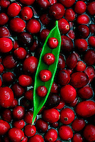 Cranberries.