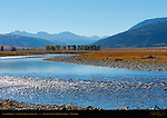 Lamar River, Lamar Valley in Autumn, Yellowstone National Park, Wyoming