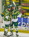 24 November 2013: University of Vermont Catamount Forward Colin  Markison (left), a Junior from Princeton, NJ, embraces Forward Mario Puskarich (right), a Freshman from Fort Walton Beach, FL, after Puskarich scores Vermont's second goal against the University of Massachusetts Minutemen in the third period at Gutterson Fieldhouse in Burlington, Vermont. The Cats wore special camouflage jerseys to celebrate Military Appreciation Day. The game-worn jerseys were auctioned off with proceeds benefiting the Vermont Veterans Fund (VVF). The Catamounts shut out the Minutemen 2-0 to sweep the 2-game home-and-away weekend Hockey East Series. Mandatory Credit: Ed Wolfstein Photo *** RAW (NEF) Image File Available ***