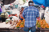 The food market in the city of Campeche a UNESCO World Heritage site, Campeche,  Mexico