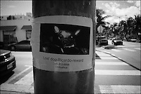 Lost dog Ricardo reward<br /> From &quot;Miami in Black and White&quot; series. Miami Beach, 2009