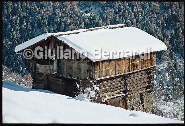 PEJO_n16 Val di Pejo in inverno, immagini dei villaggi,delle montagne, delle baite, delle piste di sci e attivit&agrave; sportive,<br /> Pejo in winter, images of the villages, mountains, mountain huts, the ski slopes and sporting activities,<br /> Pejo im Winter, Bilder der D&ouml;rfer, Berge, Bergh&uuml;tten, den Skipisten und sportlichen Aktivit&auml;ten,<br /> Pejo en hiver, les images des villages, des montagnes, des cabanes de montagne, les pistes de ski et des activit&eacute;s sportives,<br /> Pejo en invierno, las im&aacute;genes de los pueblos, monta&ntilde;as, refugios de monta&ntilde;a, las pistas de esqu&iacute; y actividades deportivas,<br /> Pejo fi fasl alshshata'a, sur min alquraa waljibal wal'akwakh aljabaliat, wamunhadarat alttazalluj wal'anshitat alrriadia,<br /> Pejo的冬天,鄉村,山區,山木屋,滑雪場和體育活動的圖像,<br /> 冬のペヨ、村、山、山の小屋、スキー場やスポーツ活動のイメージ,<br /> Pejo in de winter, beelden van de dorpen, bergen, berghutten, de skipistes en sportieve activiteiten,<br /> Pejo w zimie, obrazy wsi, g&oacute;r, schronisk g&oacute;rskich, stok&oacute;w narciarskich i uprawiania sportu,<br /> Pejo no inverno, as imagens das aldeias, montanhas, abrigos de montanha, pistas de esqui e actividades desportivas,<br /> Pejo t&eacute;len, a k&eacute;pek a falvak, hegyek, hegyi, a s&iacute;p&aacute;ly&aacute;k &eacute;s sporttev&eacute;kenys&eacute;gek