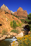 The Virgin River and the Court of the Patriarchs in Zion Canyon, Zion National Park, Utah
