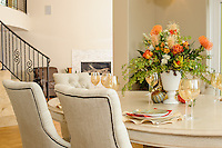 Darcy Tsung Design Interiors | Interior Design and Professional Portraits San Francisco Bay Area