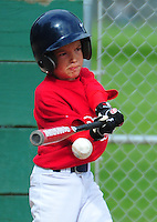 2011 PNLL ACTION