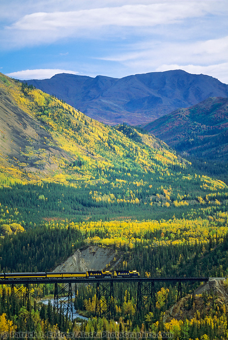 Alaska train on trestle at Denali National Park, Alaska