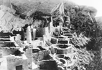 Cliff Palace, 1917, photograph, in the Chapin Mesa Archeological Museum, in Mesa Verde National Park, Montezuma County, Colorado, USA. Cliff Palace, 13th century, is a huge multi-storey Native American Puebloan dwelling, housing 125 people, with 23 kivas and 150 rooms, rediscovered in 1888. It is the largest cliff house in the park, possibly used for social and ceremonial purposes and is thought to be part of a larger community encompassing 60 pueblos and 600 people. It is made from sandstone blocks, mortar and wooden beams and was originally painted with earthen plasters. Mesa Verde is the largest archaeological site in America, with Native Americans inhabiting the area from 7500 BC to 13th century AD. It is listed as a UNESCO World Heritage Site. Picture by Manuel Cohen