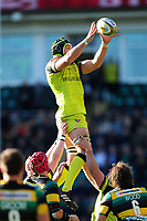 Graham Kitchener of Leicester Tigers wins the ball at a lineout. Aviva Premiership match, between Northampton Saints and Leicester Tigers on March 25, 2017 at Franklin's Gardens in Northampton, England. Photo by: Patrick Khachfe / JMP