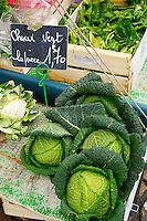 Savoy Cabbage  market France