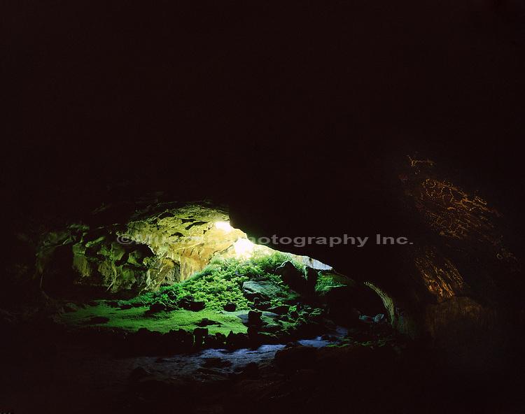 """Fern Cave, Petroglyphs Lava Beds NM  CALIFORNIA"""