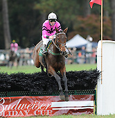 Aiken Fall Races - 10/27/12