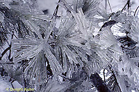 Ice, Frost, Dew