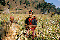 Peasant woman's in Rolpa District Nepal
