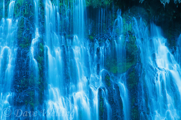 730850003 an intimate view of the rivulets and ferns that comprise burney falls in mcarthur burney state park in northeastern california