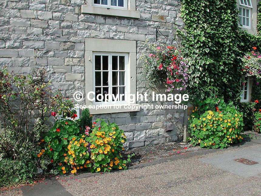 Detail, stone-built cottage in Ashford-in-the-Water, Derbyshire, England. Ivy,Creeper, Flowers, hanging basket. Ref: 200108152955.<br /> <br /> Copyright Image from Victor Patterson, 54 Dorchester Park, Belfast, UK, BT9 6RJ<br /> <br /> t: +44 28 90661296<br /> m: +44 7802 353836<br /> vm: +44 20 88167153<br /> e1: victorpatterson@me.com<br /> e2: victorpatterson@gmail.com<br /> <br /> For my Terms and Conditions of Use go to www.victorpatterson.com