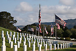 Flags wave above tombstones