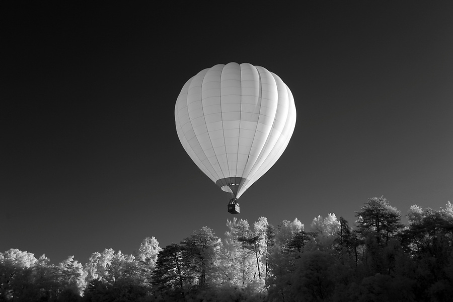 A hot air balloon takes off over trees in Charlottesville, Va. Photo/Andrew Shurtleff