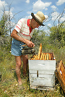 An old beekeeper at his hive in Valensole. He has seen the evolution and adaptation of beekeeping over the last sixty years.