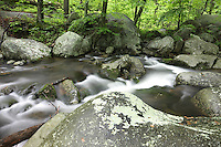 Blue Ridge National Park_Shenandoah National Forest (Click Thumbnails below to &quot;Add to Cart&quot;)
