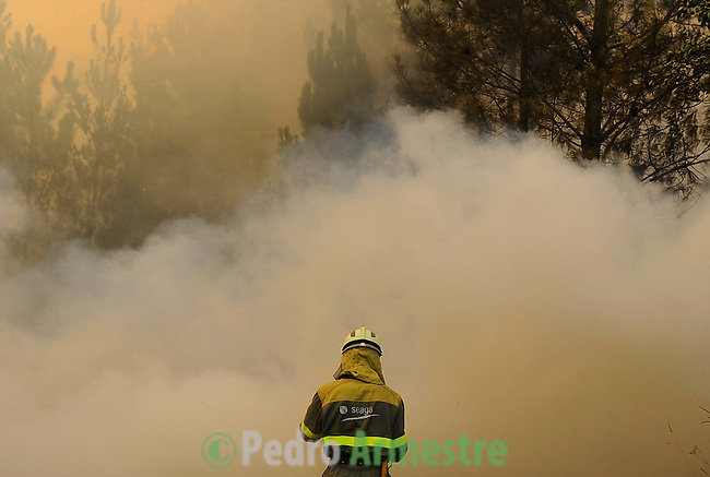 A member of the Galician fire brigade works around the fire area in Porqueira, on August 14, 2010, near A Coruña. Pedro ARMESTRE