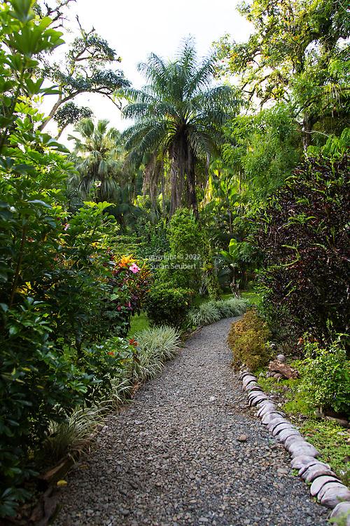Casa Orquideas Botanical Gardens, Golfo Dulce, Costa Rica