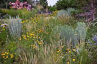 Colorado Prairie Garden