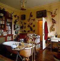 The walls of this bathroom are covered with stuffed birds and a large bookcase faces the the roll-top bath which stands in the centre of the room