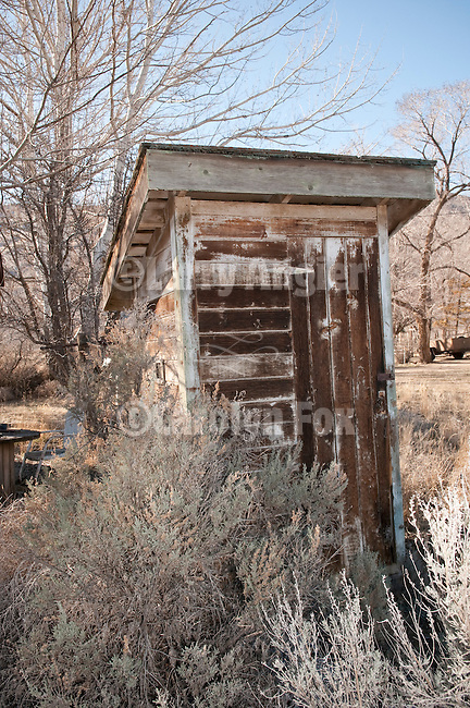 Wooden outhouse (Eleanor) in the sage near Denio, Nev.