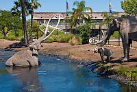 The La Brea Tar Pits and Hancock Park
