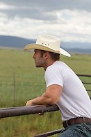 Cowboy leaning on a fence while looking out on a range
