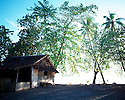 A hut in the village of Tembin on the beach..Kontu, New Ireland Province, Papua New Guinea;