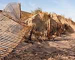 The history of efforts to preserve the popular US east-coast beaches is reflected in remains of two different dune fences exposed by the November 2009 nor'easter at Rehoboth Beach, Delaware, USA.