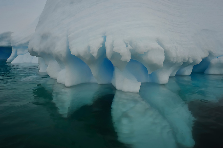 Ice Coral? - Fantastical ice at Planeau Island