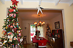 Los Altos resident Pinky Whelan fills her home with trees decorated with colorful ornaments.