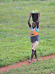 A boy carries papayas in Mizak, a small village in the south of Haiti.